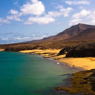 ¡Tenerife el destino perfecto!