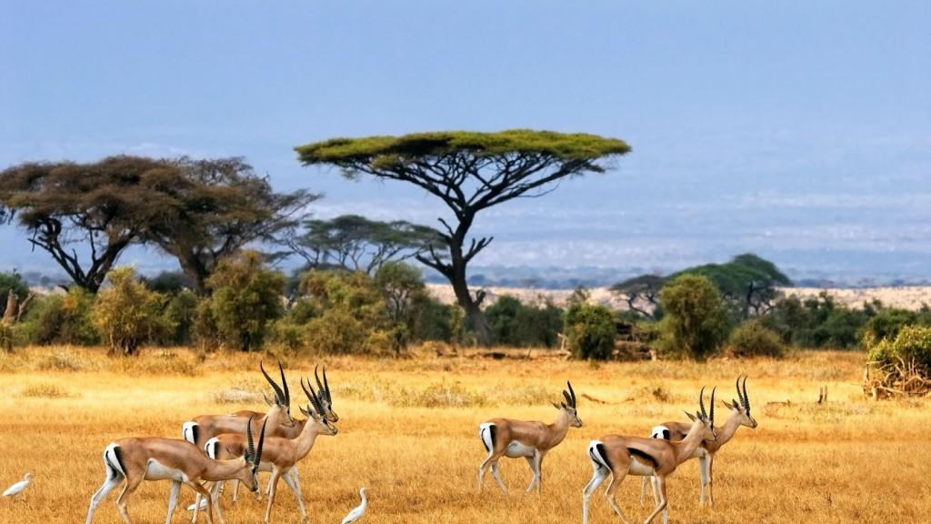 paisajes africa